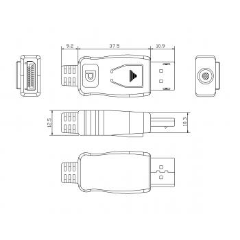 DisplayPort.png